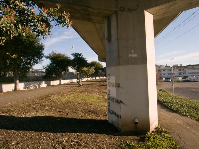 berkeley_20110110_016w.jpg