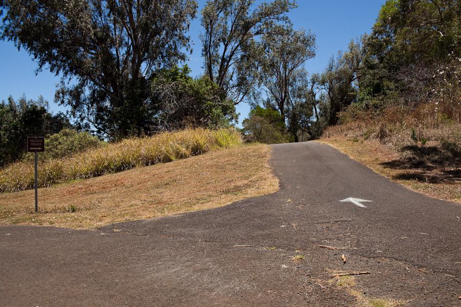 hawaii_20090609_01-3.jpg