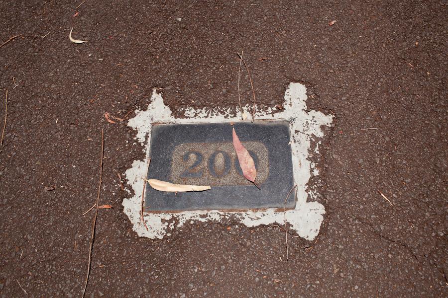 hawaii_20090609_17-12.jpg