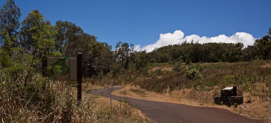 hawaii_20090609_19p-13.jpg