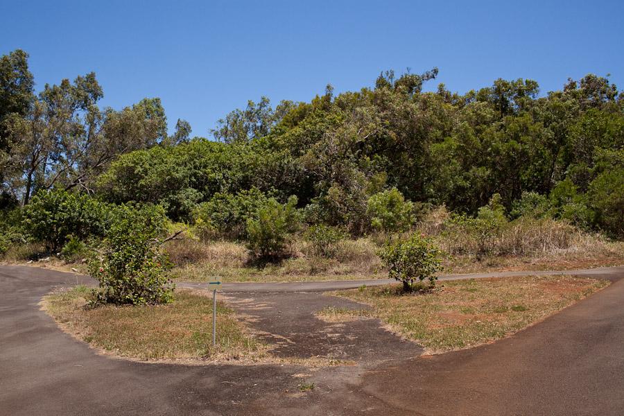 hawaii_20090609_47-21.jpg
