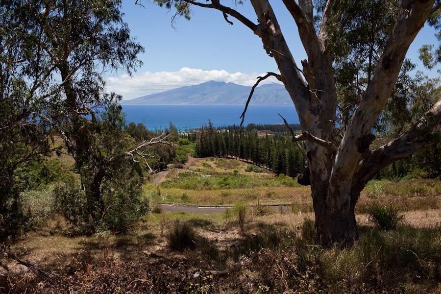 hawaii_20090609_58-24.jpg