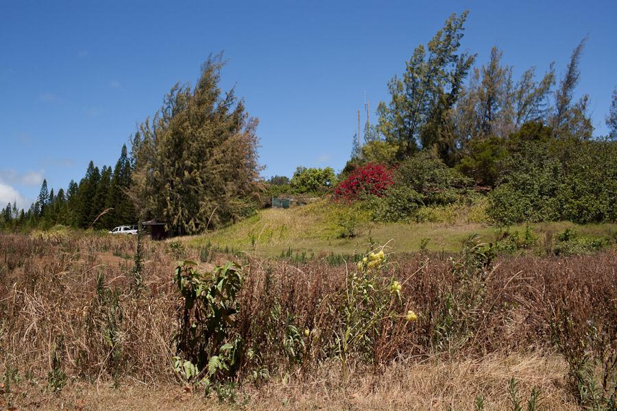 hawaii_20090609_73-28.jpg