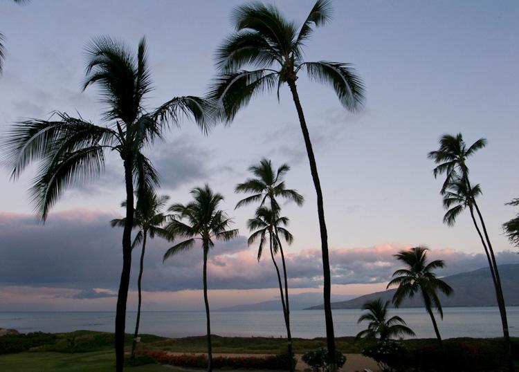hawaii_20090605_03w.jpg