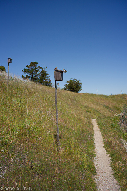 hike_20090419_055w.jpg