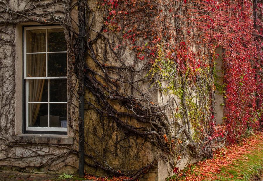 Timescape, Newport House, County Mayo, Ireland