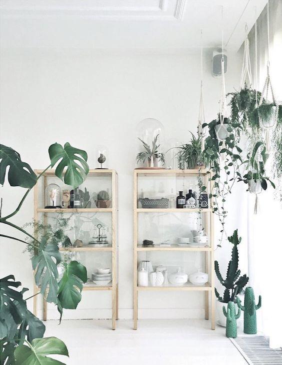scandinavian cabin house plants.jpg