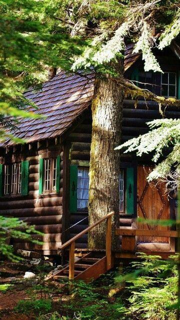 cabin shutters.jpg