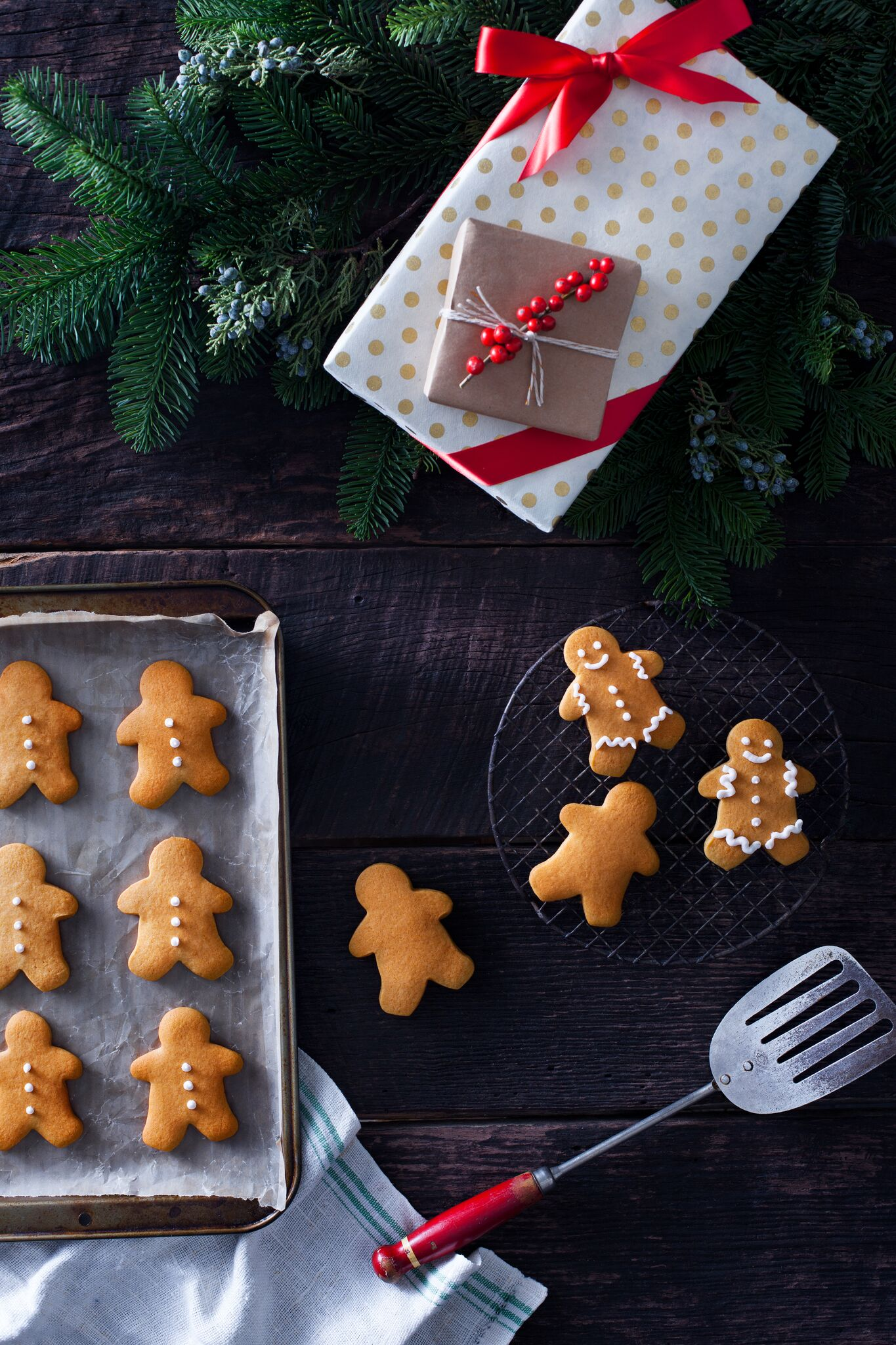 Natalie-Groce-Holiday-Cookies_03_preview.jpeg