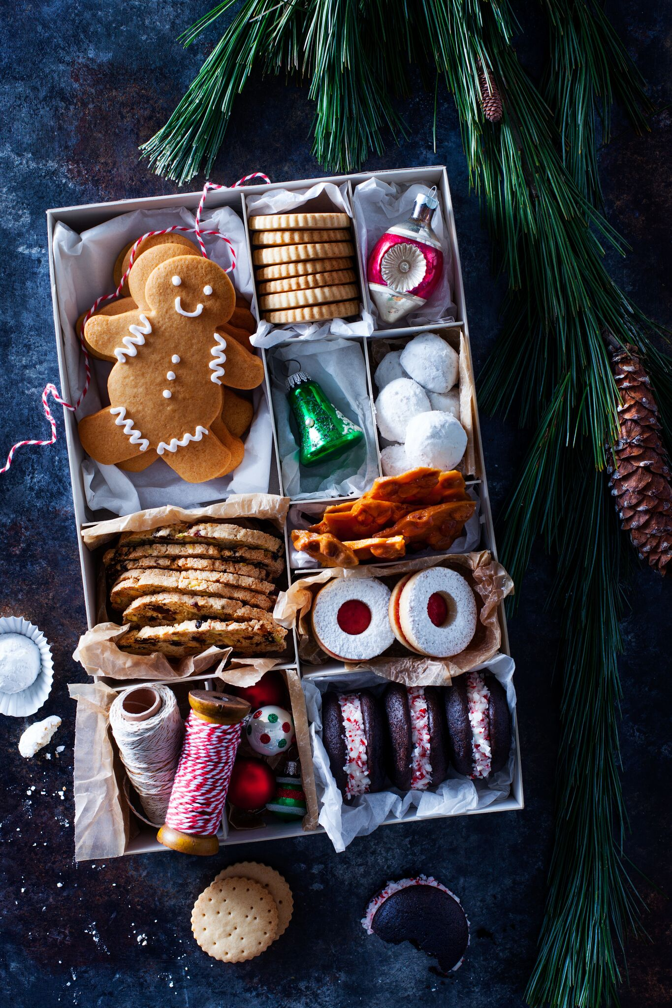 Natalie-Groce-Holiday-Cookies_05_preview.jpeg