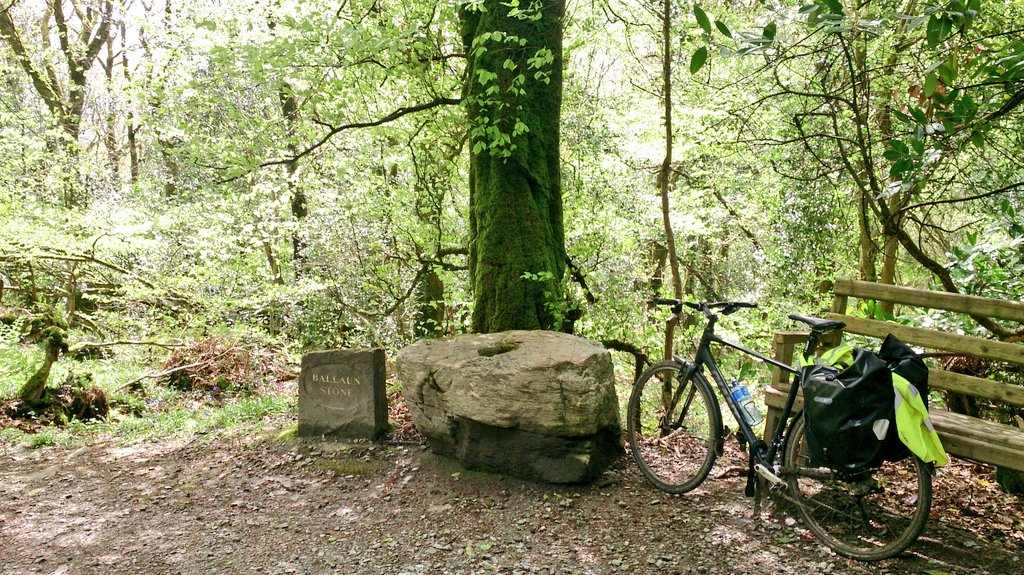 I stopped in the  Gortletteragh Wood  for lunch and a rest. There was an interesting setup and interpretation of the stones there, and it was a very quiet place to relax for a short while.