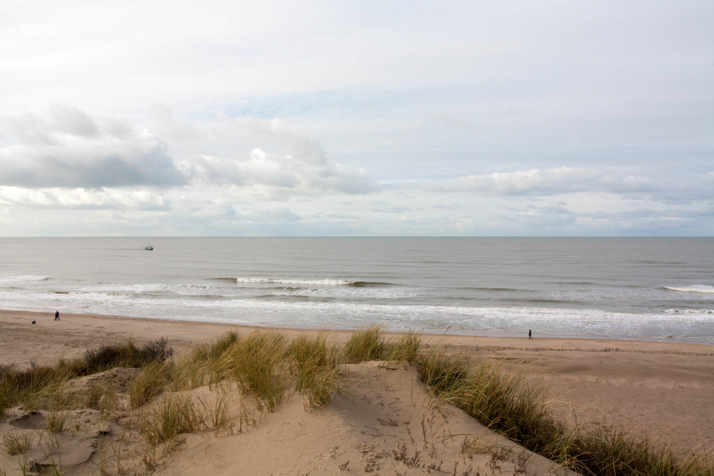 View of the North Sea from atop a sand dune