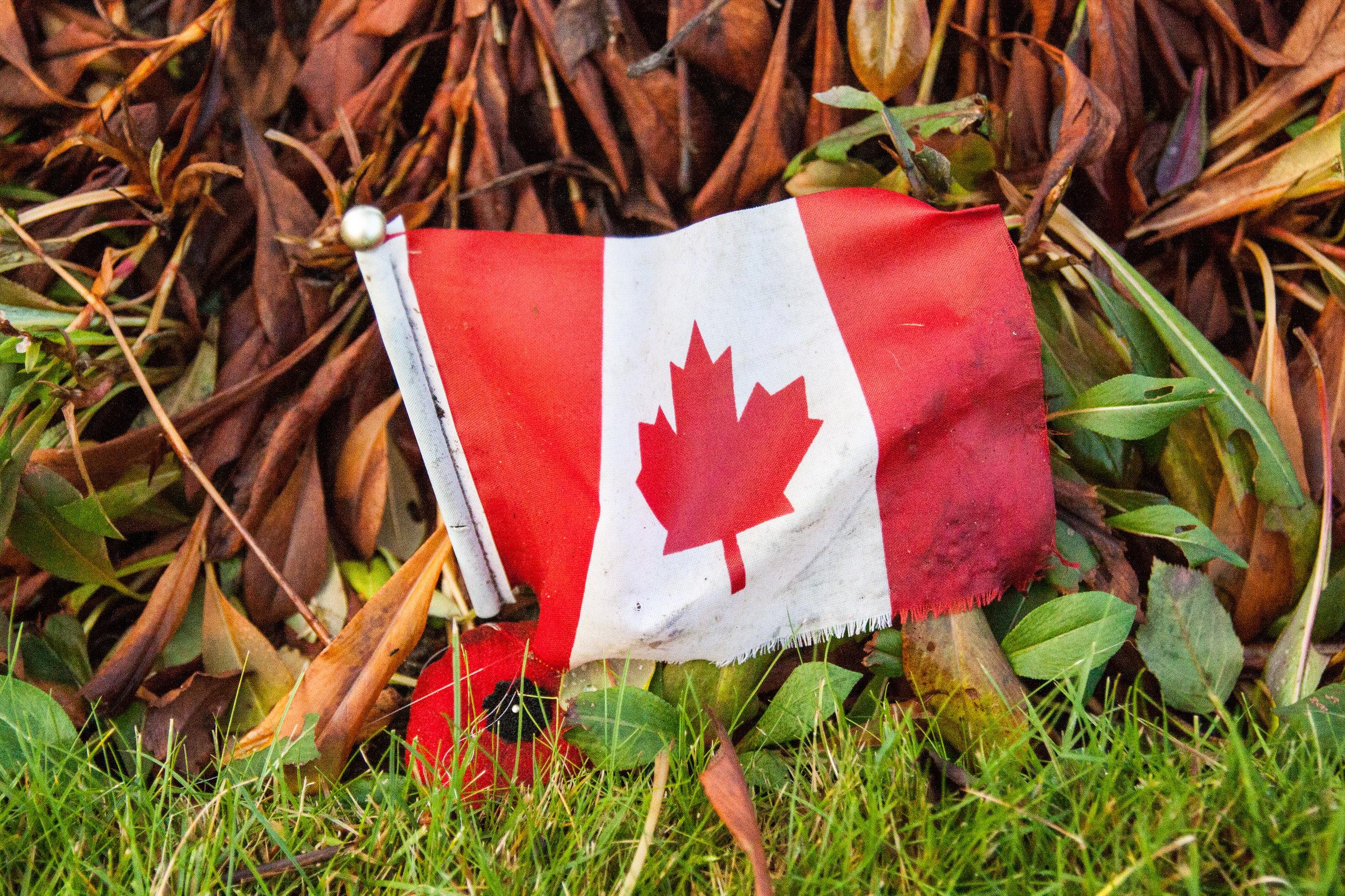 holten canadian war cemetery 6