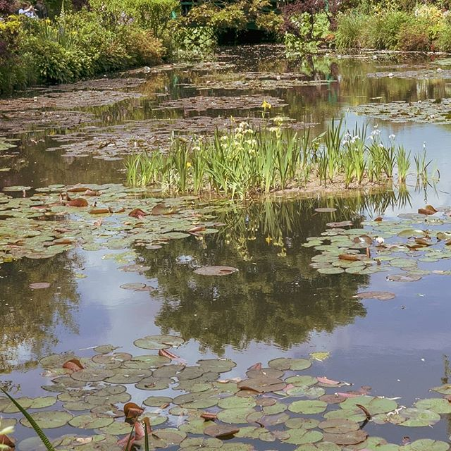 Ok, hold on to your hats! We're going pretty non-linear as we share some of our adventures over the past two months in no particular order. Next new post is about a delightful afternoon in Monet's garden.  #france #monetsgarden #garden