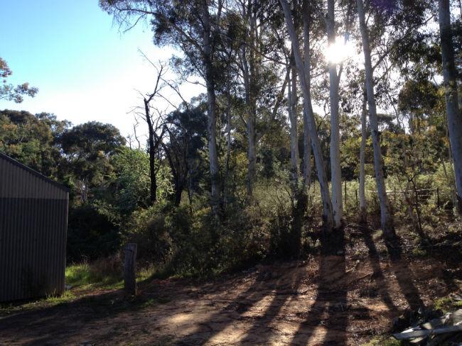 hill-end-3.jpg