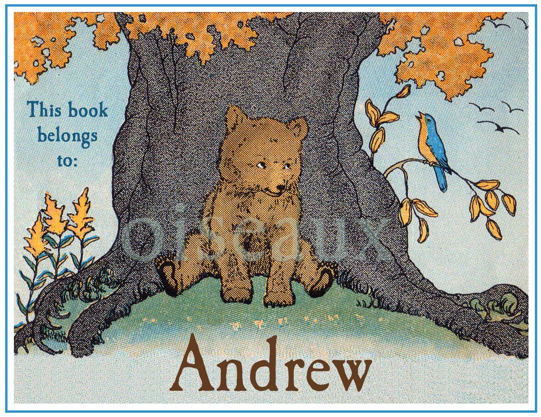 Bear & Bird Bookplates