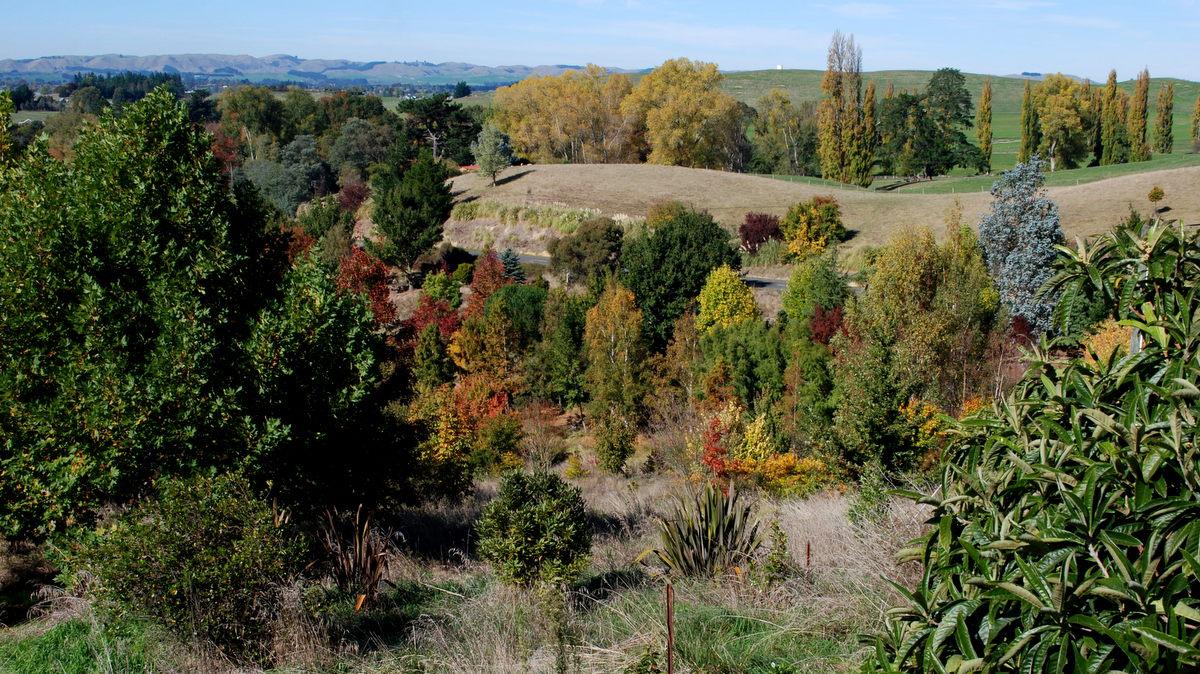 View across the lower park towards Waipukurau