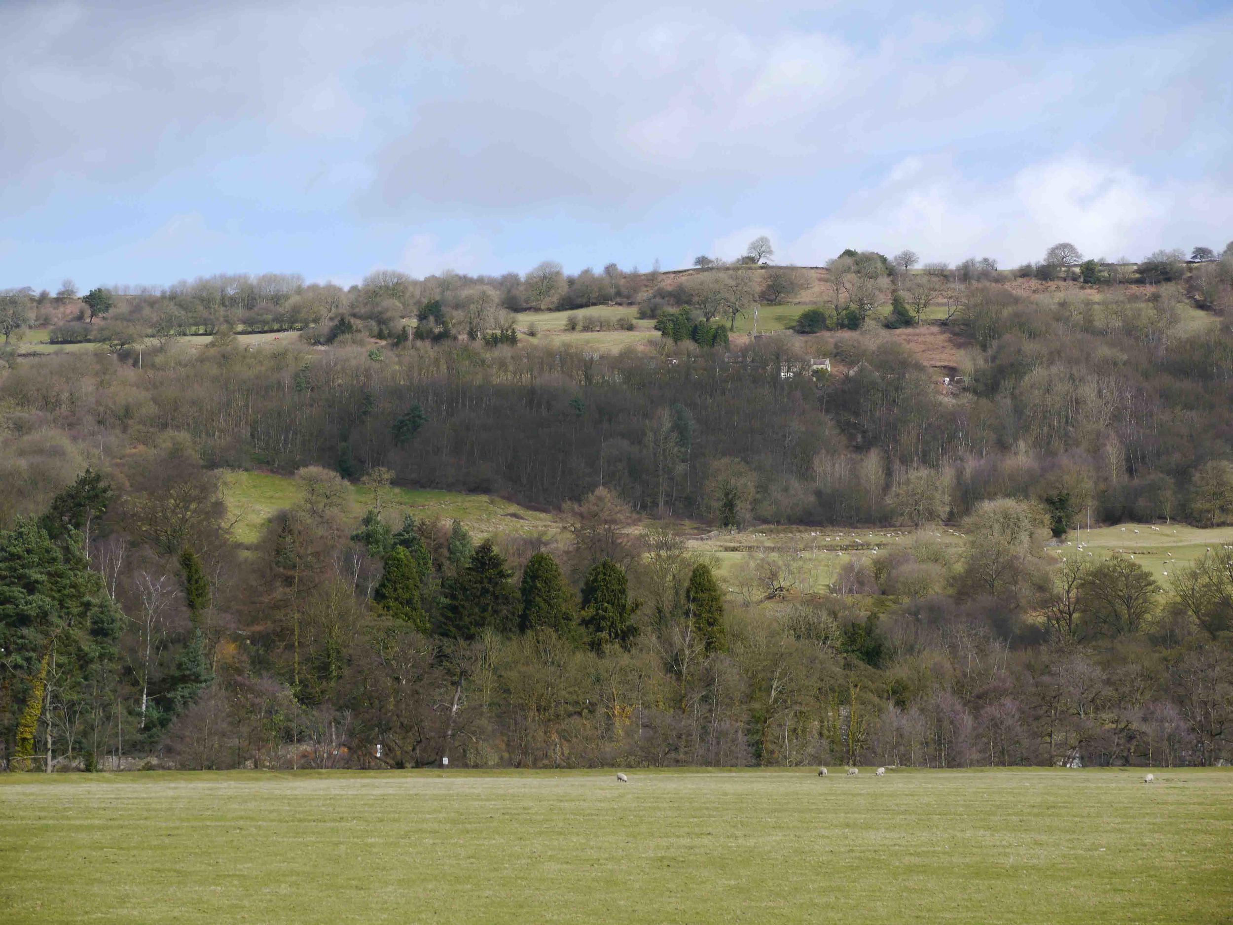 Cromford meadows