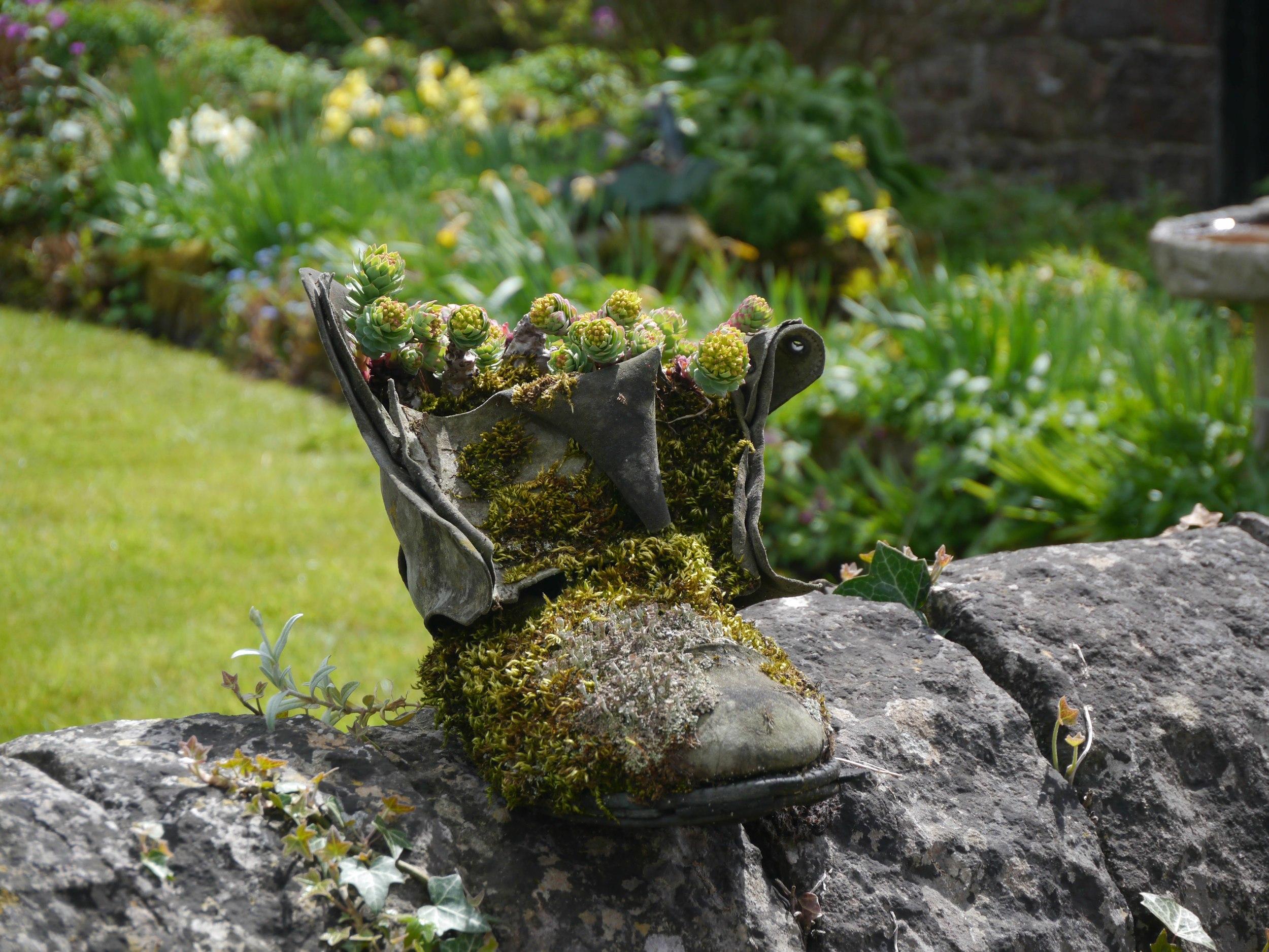 tissington boots2.jpg