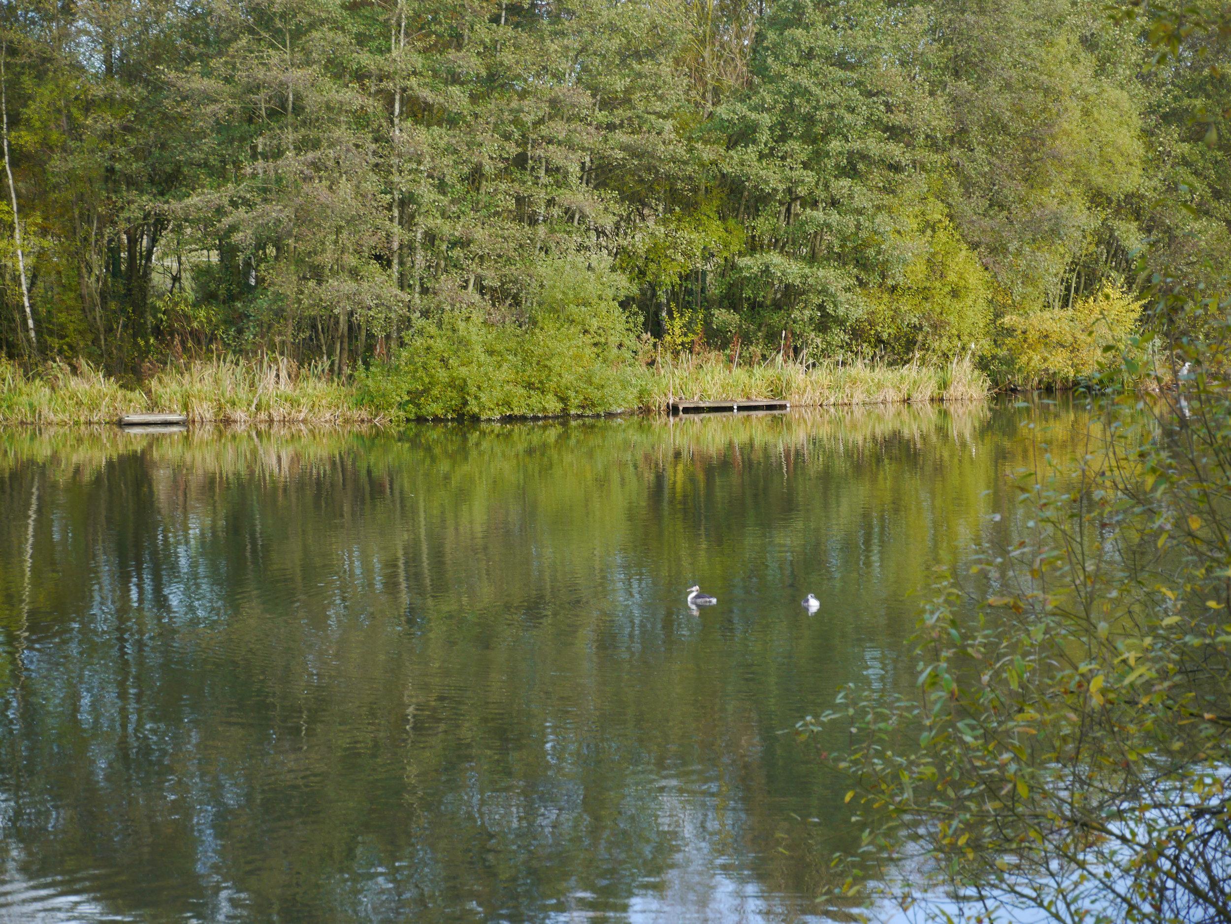 Codnor Reservoir
