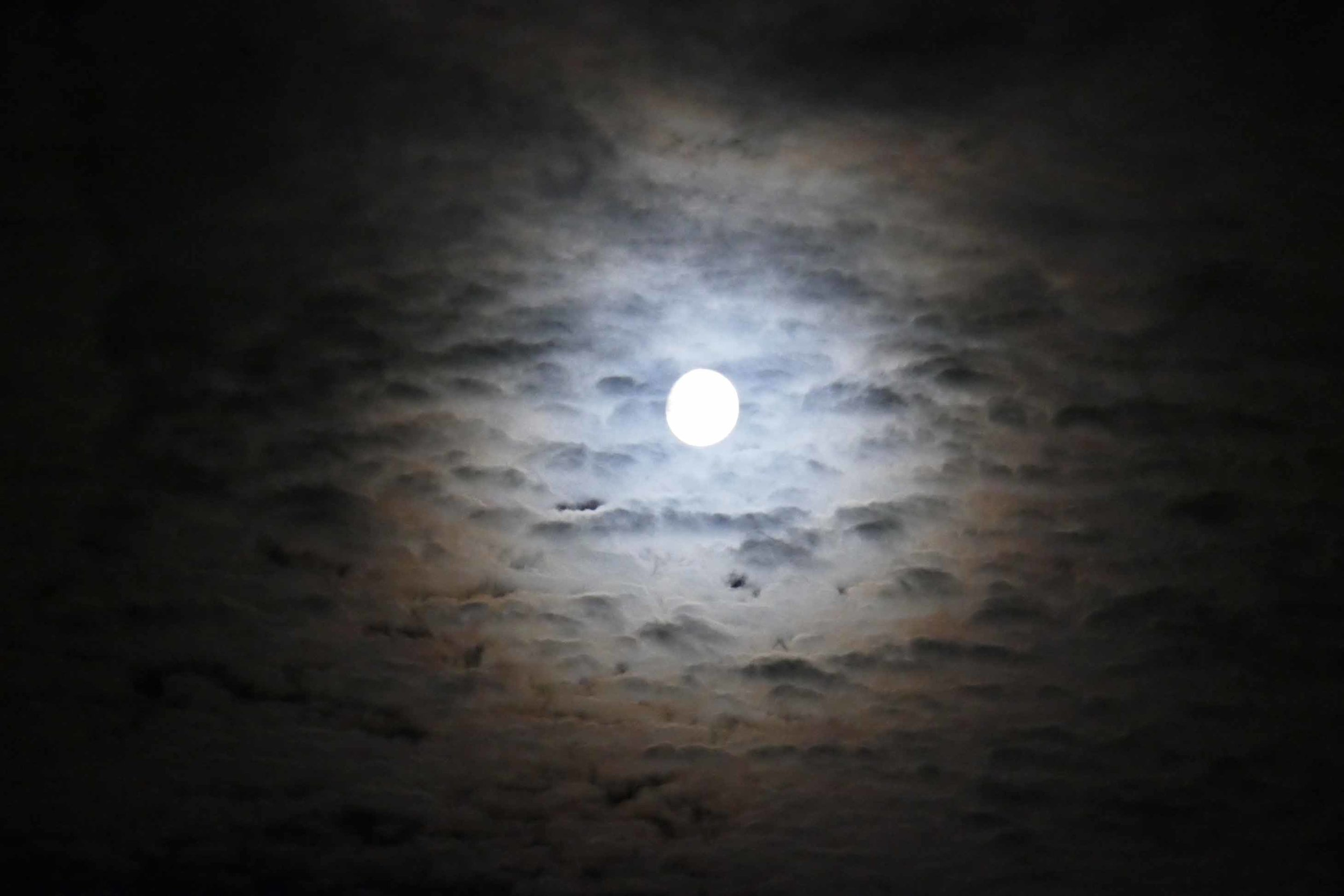 moon view.jpg