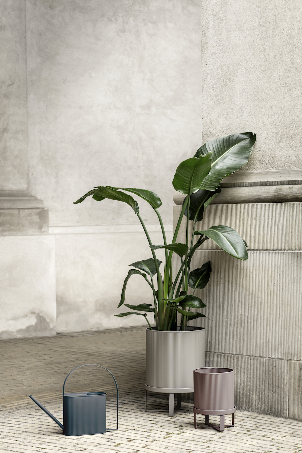 Keeping plants alive, we know, can be tricky. - Whilst greenery offers substantial visual appeal it's important to remember that plants are a living being, just like us, with life sources needed to survive.