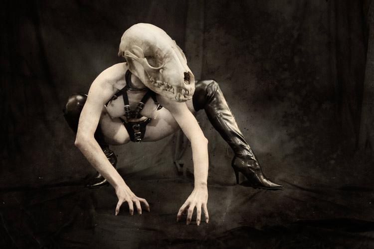 [2005] Tali, Skull