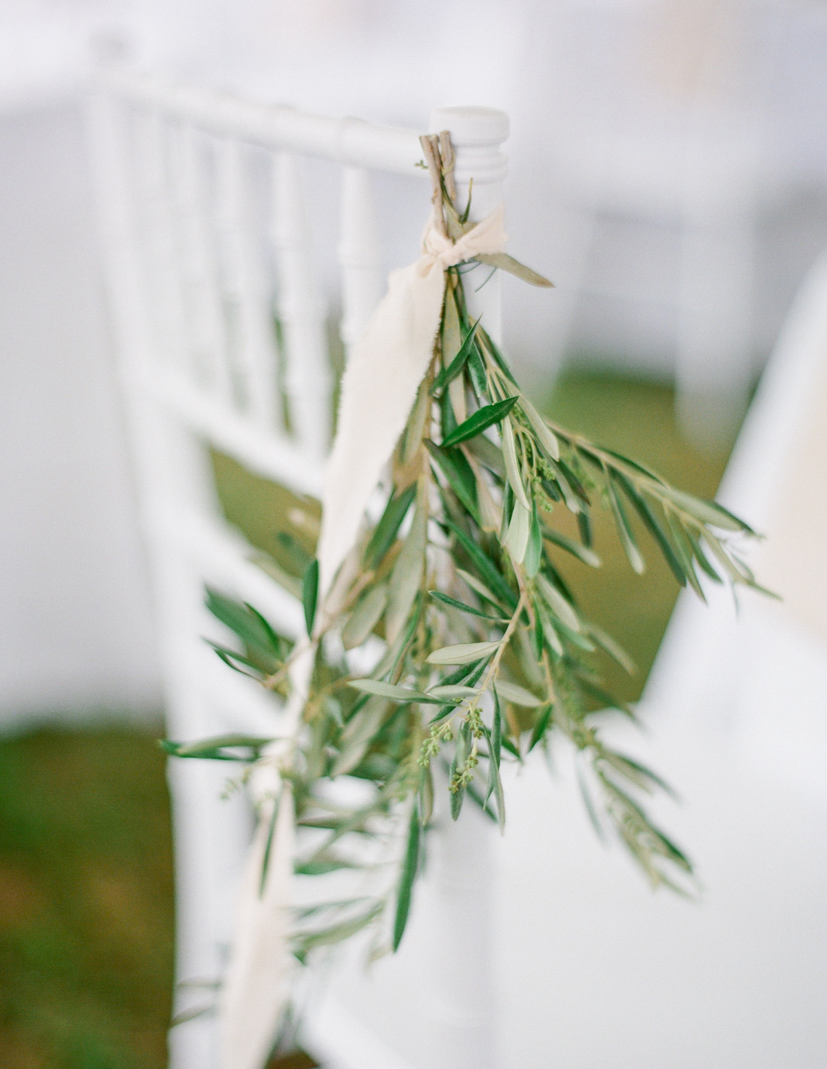 Olive branches | Fine Art Crestview Florida Wedding | Jennifer Blair Photography