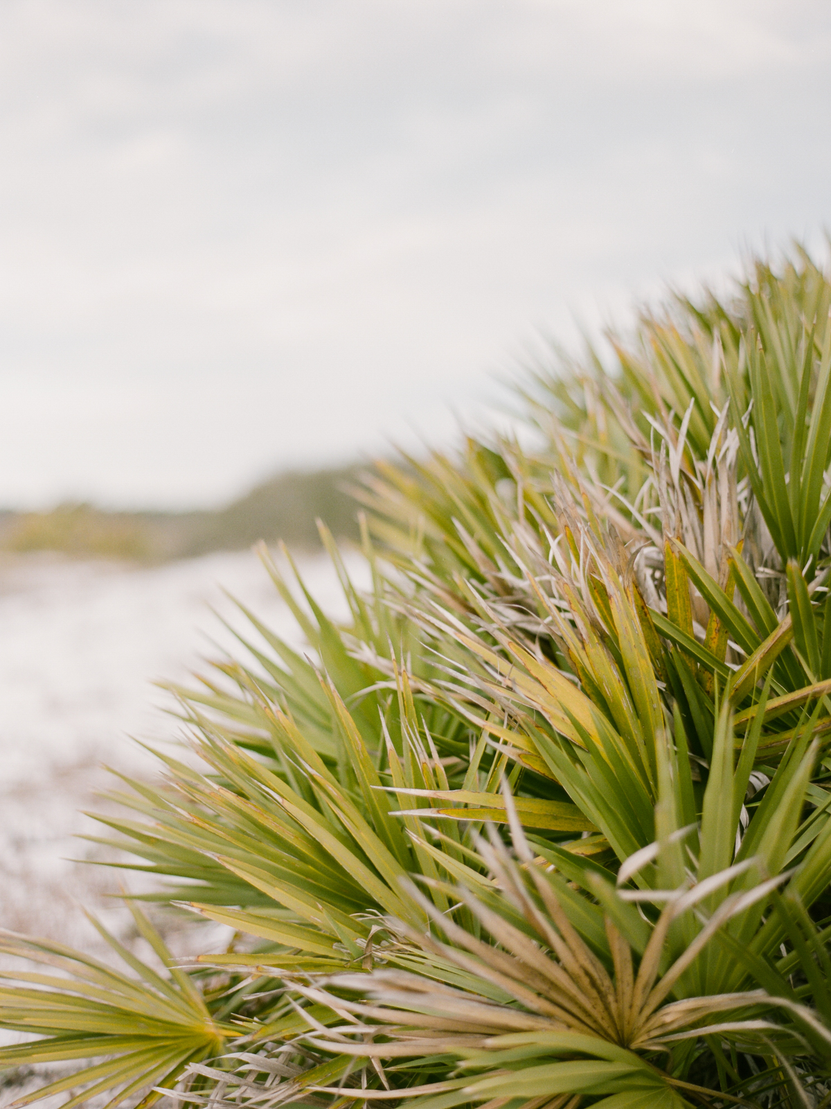 grayton beach photographer
