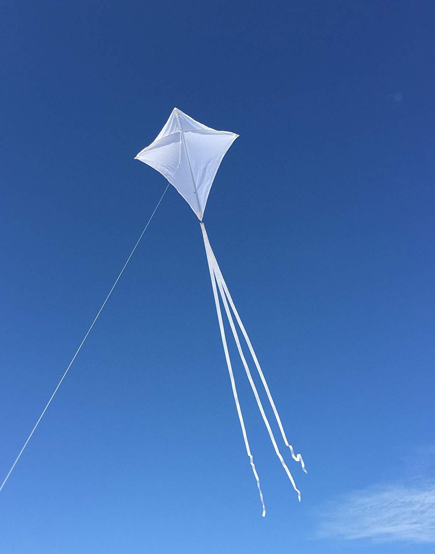 White Kite.jpg
