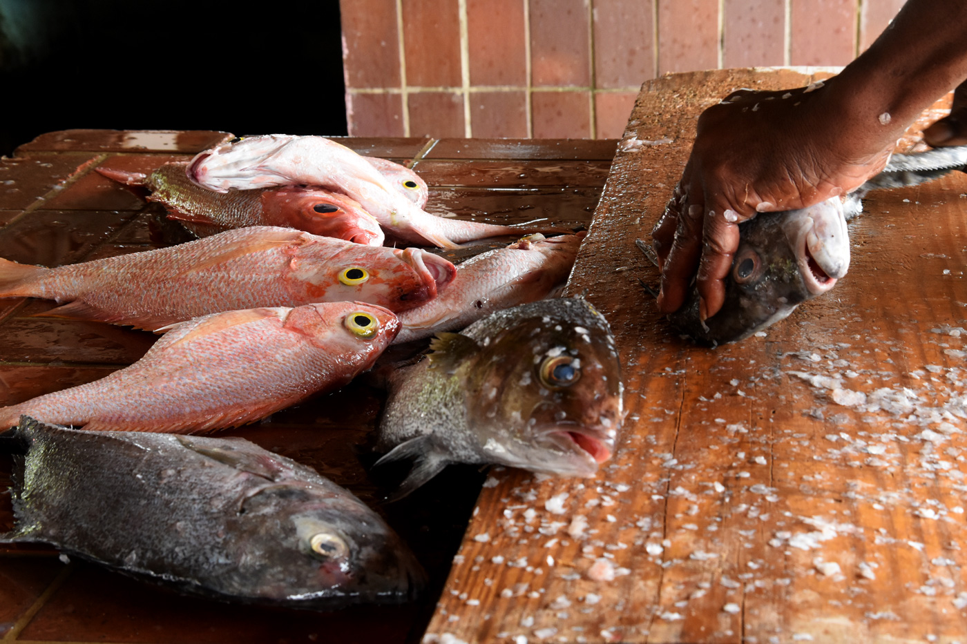Barbados_Fish_Market_web2016.jpg