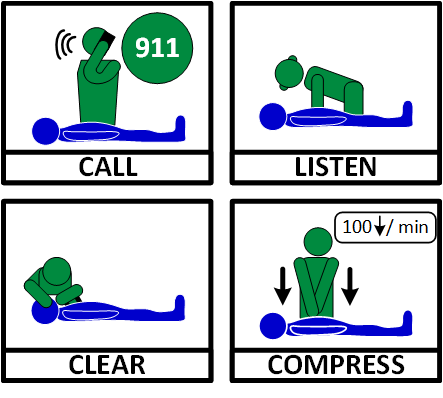 10 - Health (Know CPR)