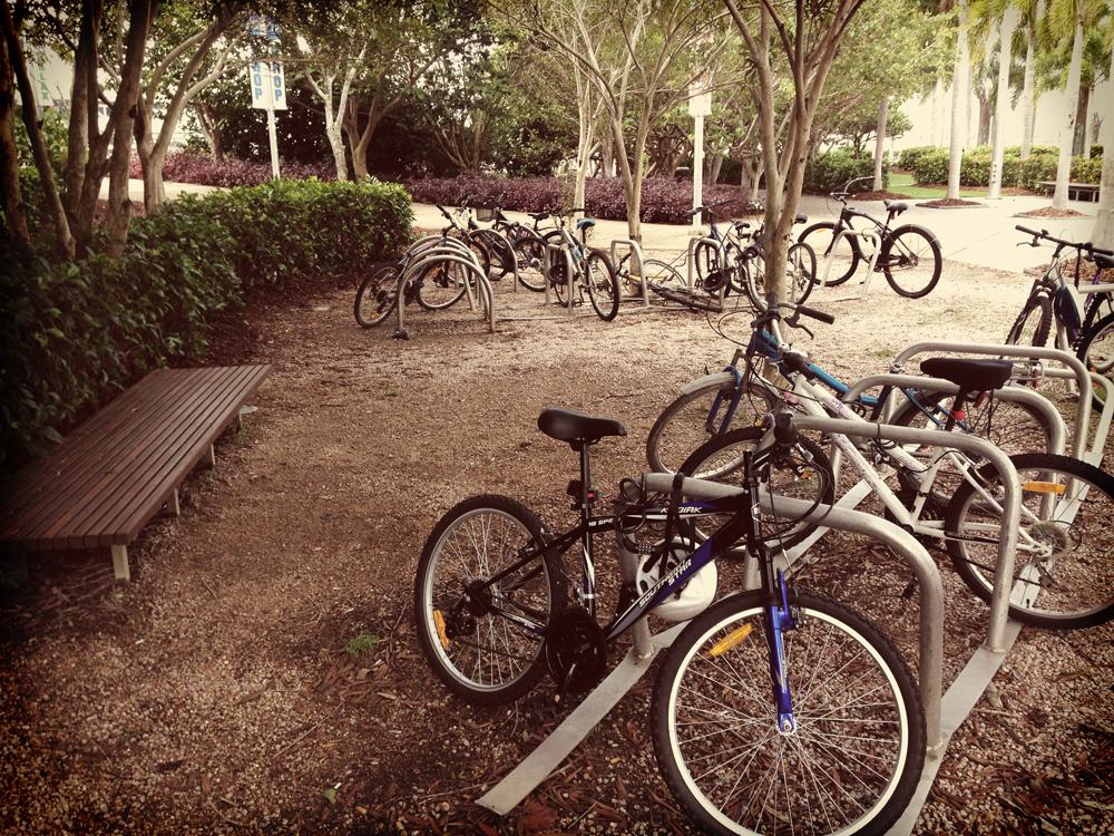esplanade-bikes.jpg