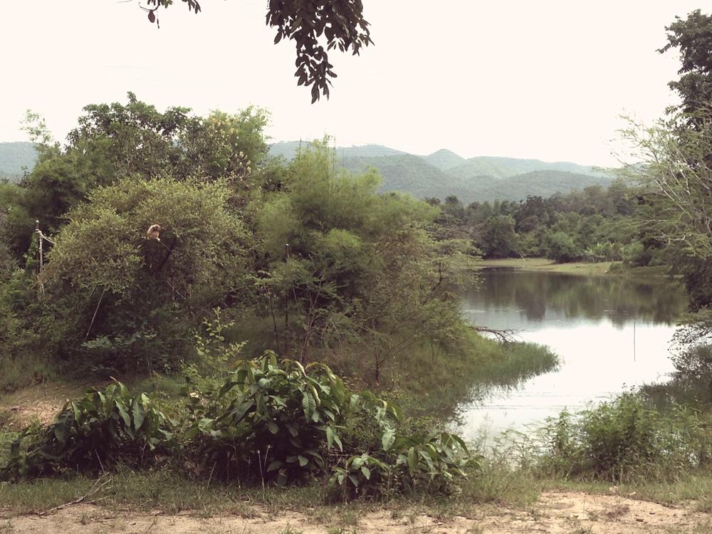 Gibbon Islands