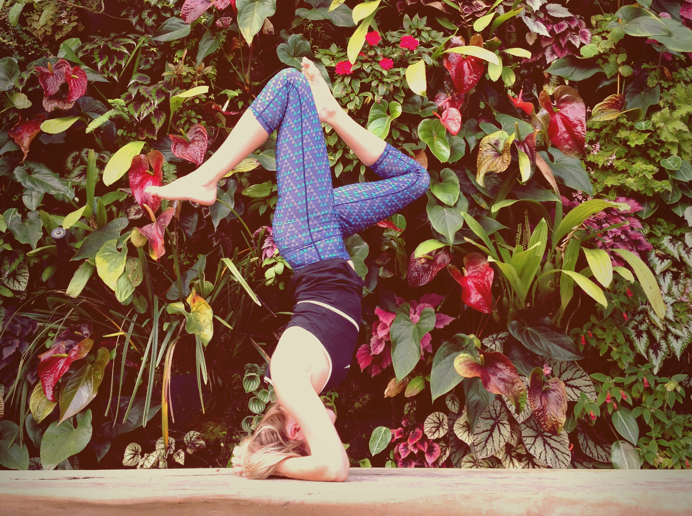 yoga-squarespace-about.jpg