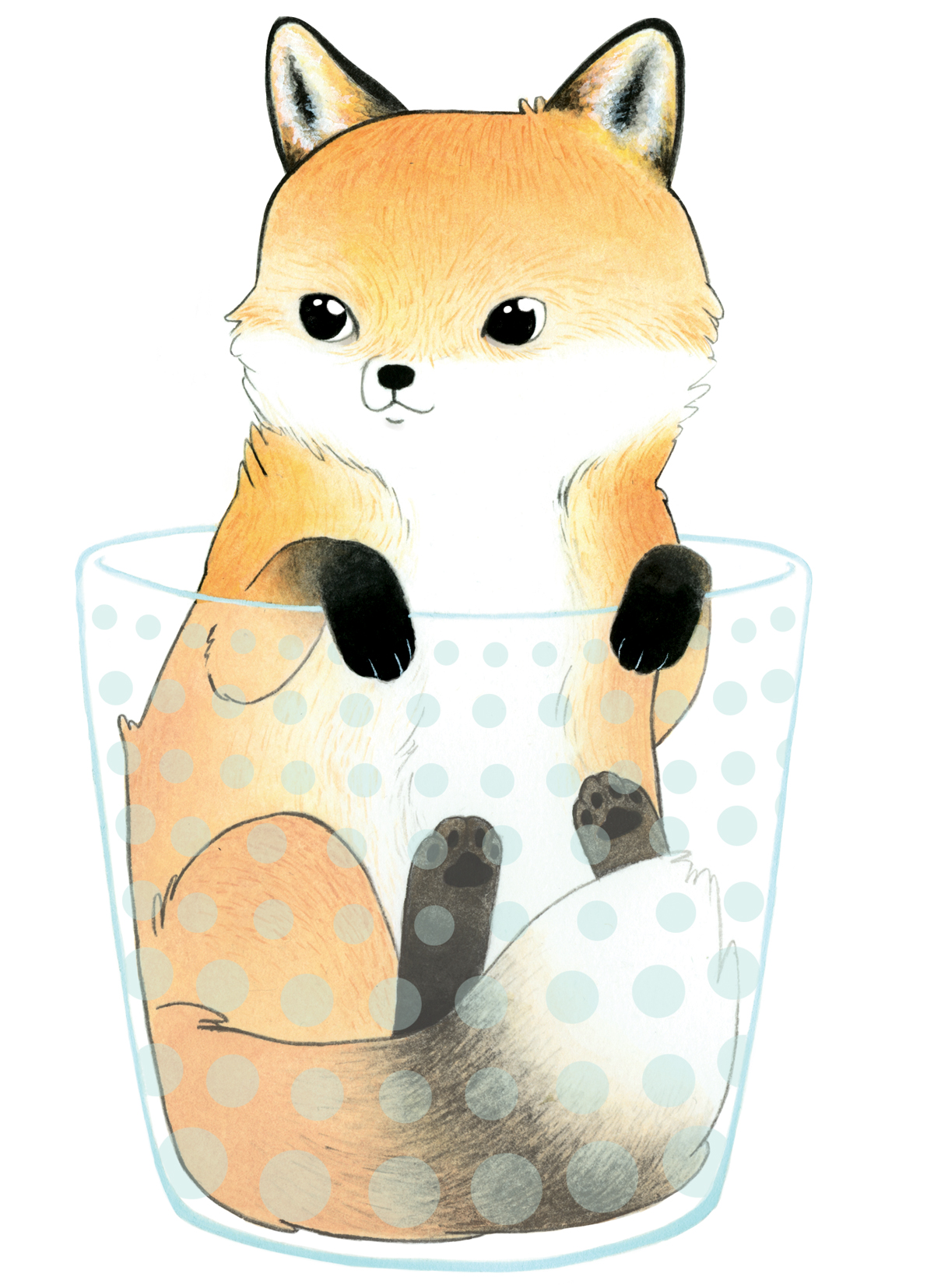 Fox in a Tumbler