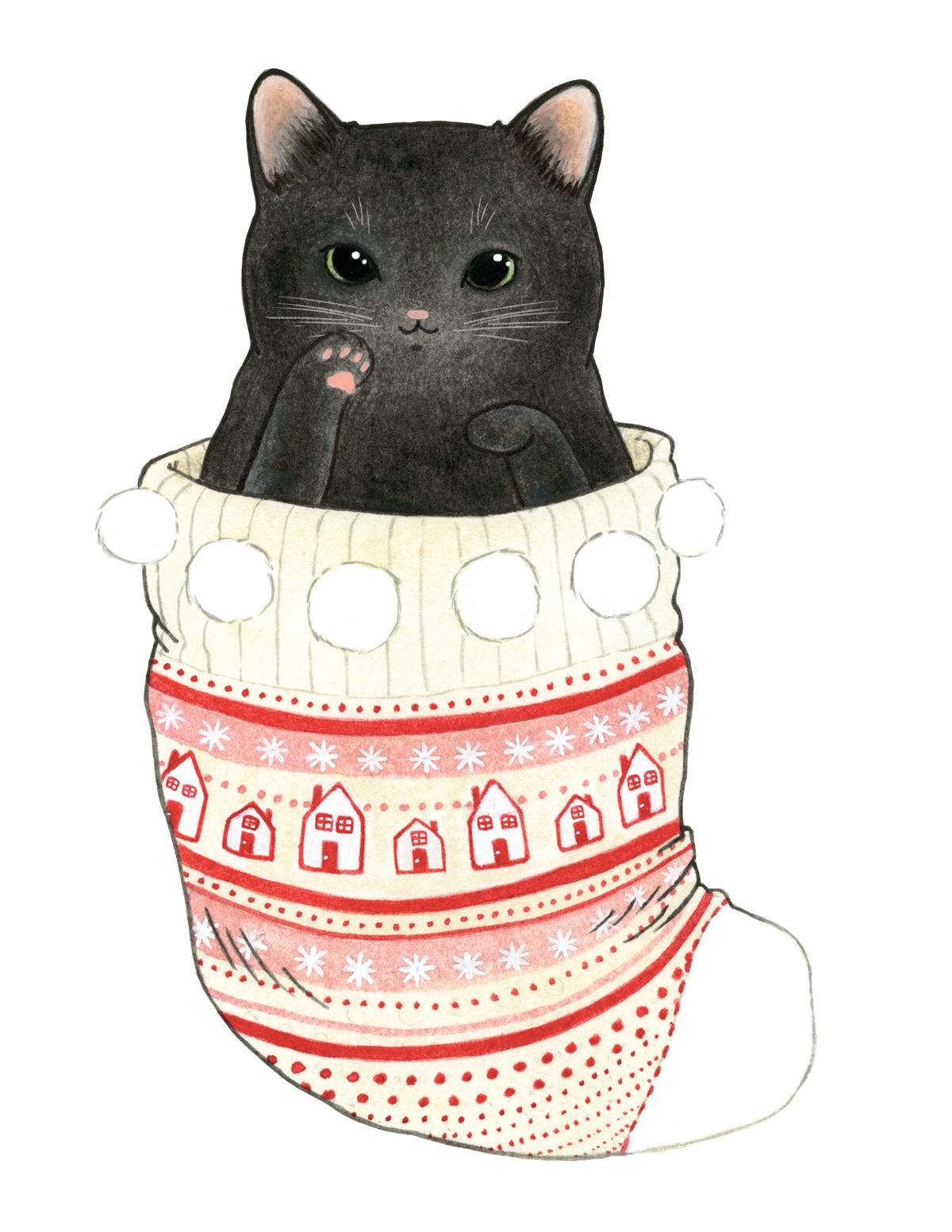 Black Cat in a Stocking