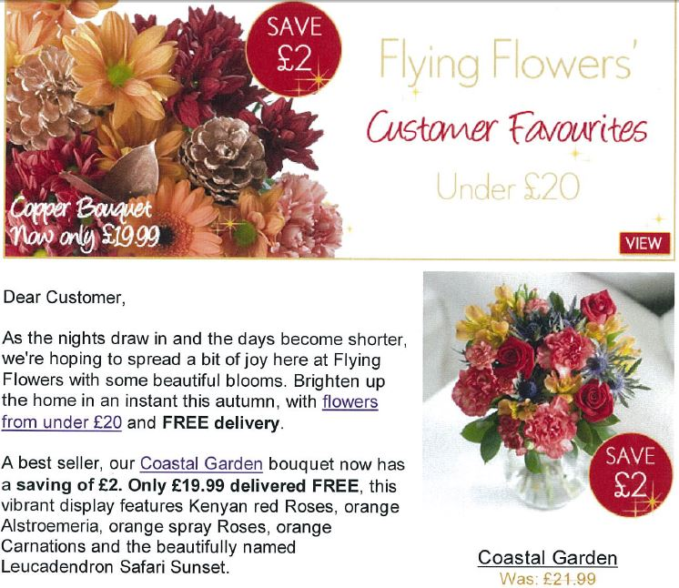 Snippet from a Flying Flowers autumn customer e-shot, 2011