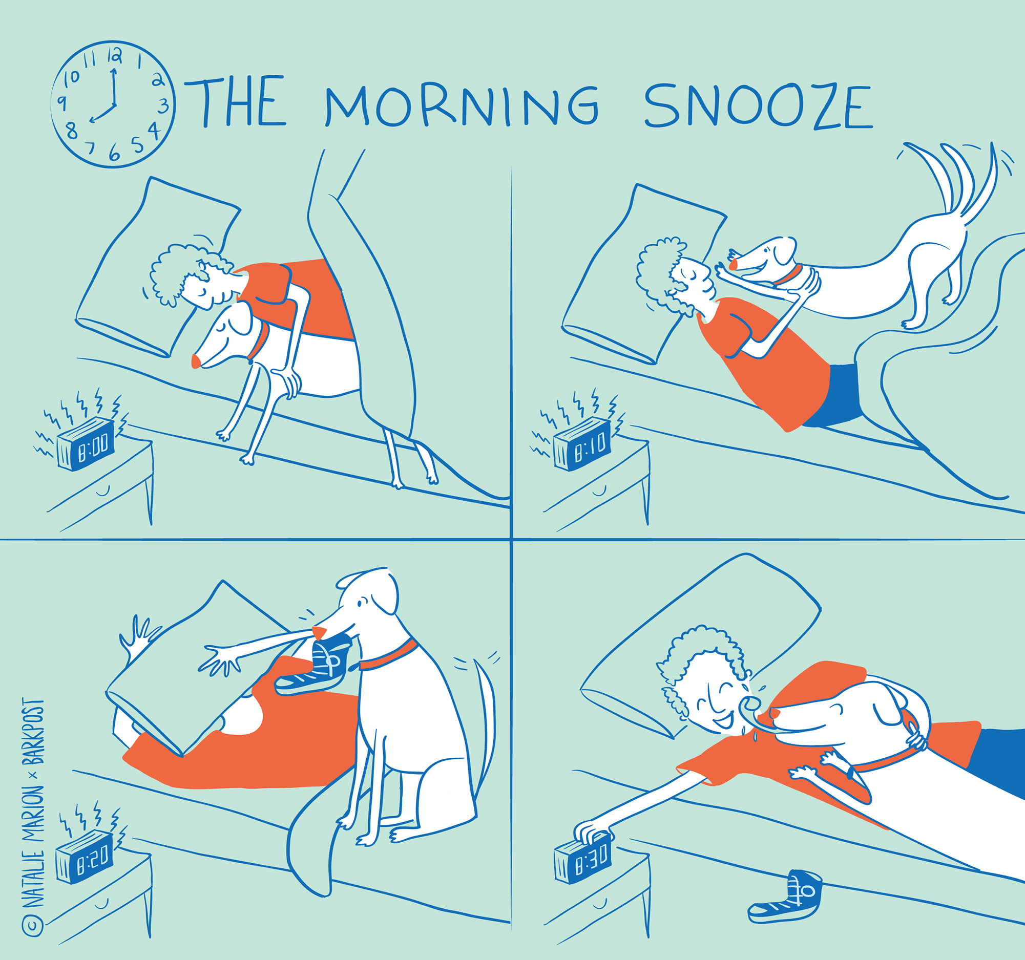 Morning_Snooze_BarkPost_Natalie_Marion.png