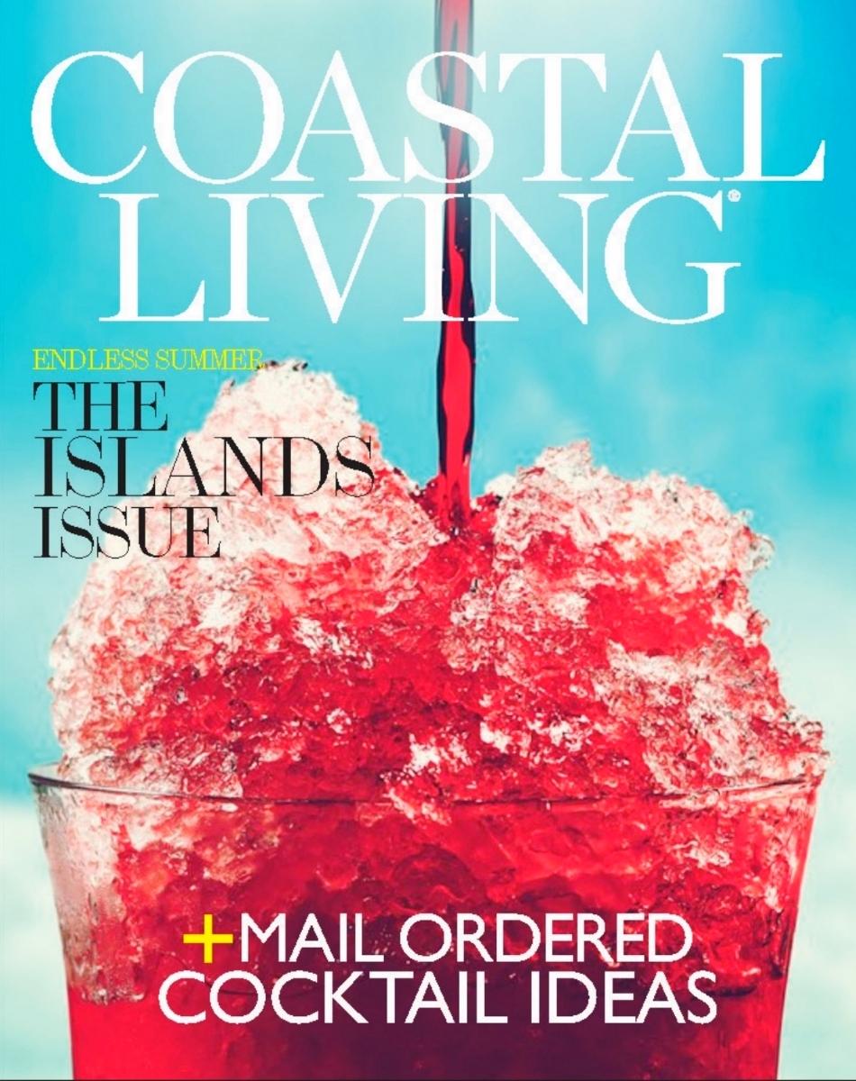 COASTAL LIVING_CRITIQUE_COVERS_DANIEL CHEN_Page_4.jpg