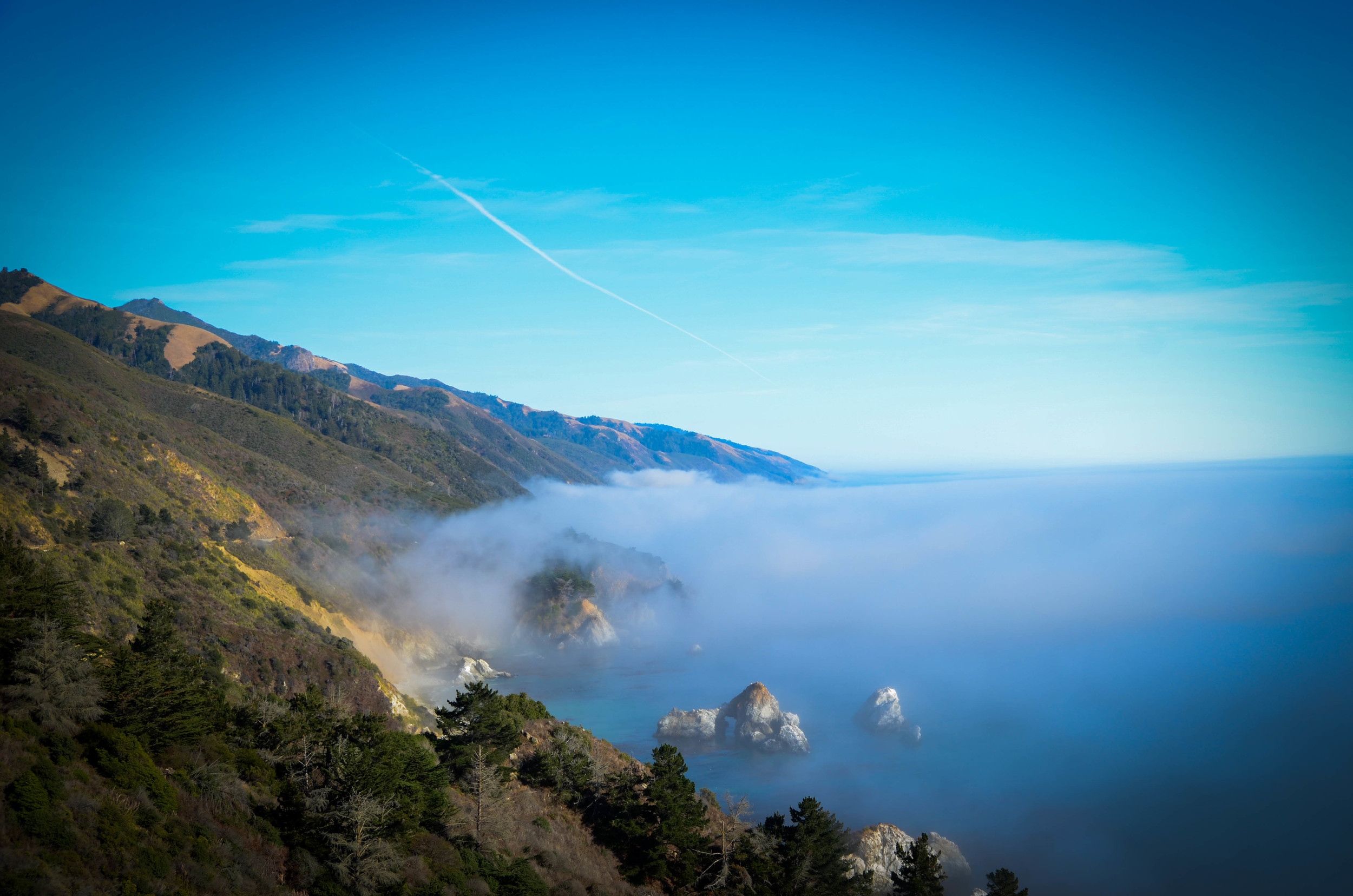 Half an hour after we got to the area, a huge fog rolled in. Timing was everything on this trip.