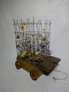 Coyote Willow Circus by Julie Brokken