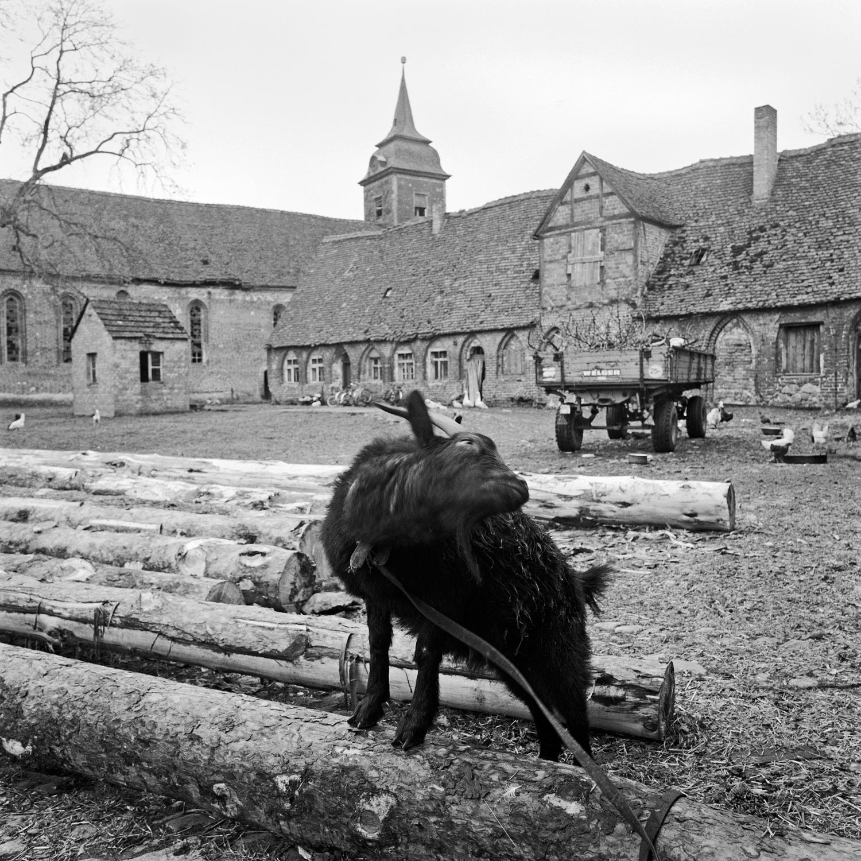 Kloster Dambeck