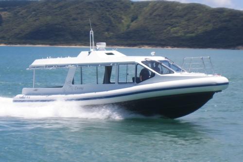 Naiad 11.3m Water Taxi 1.jpg