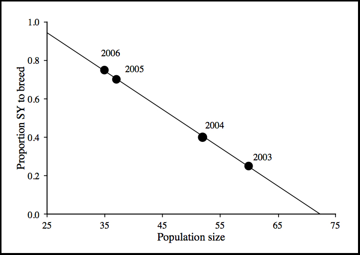 Relationship between population size (# breeding pairs) and proportion of the second-year male (SY) population to that bred in their first year.