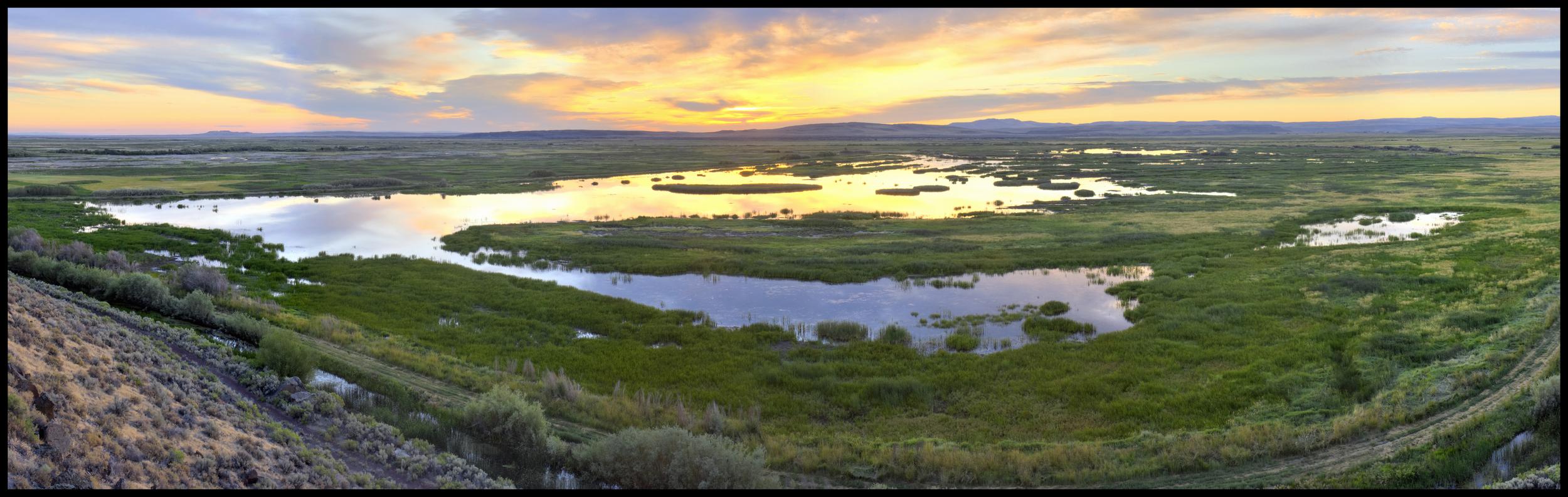 Buena Vista, Malheur National Wildlife Refuge, OR