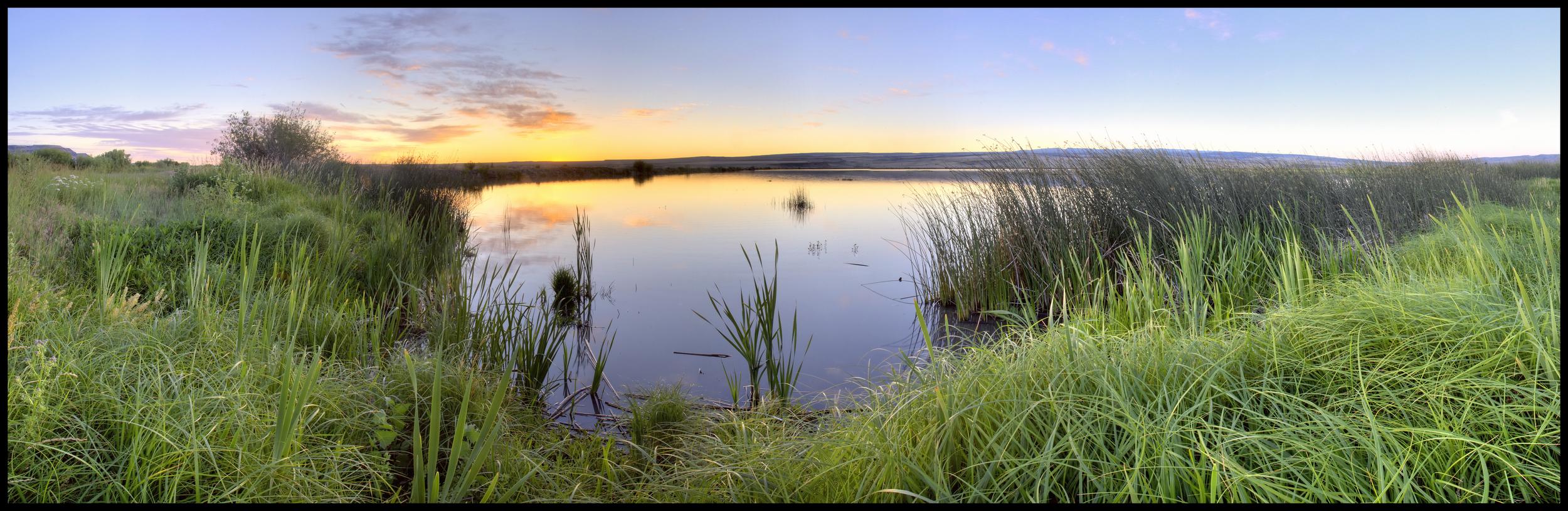 East Canal Pond, Malheur National Wildlife Refuge, OR