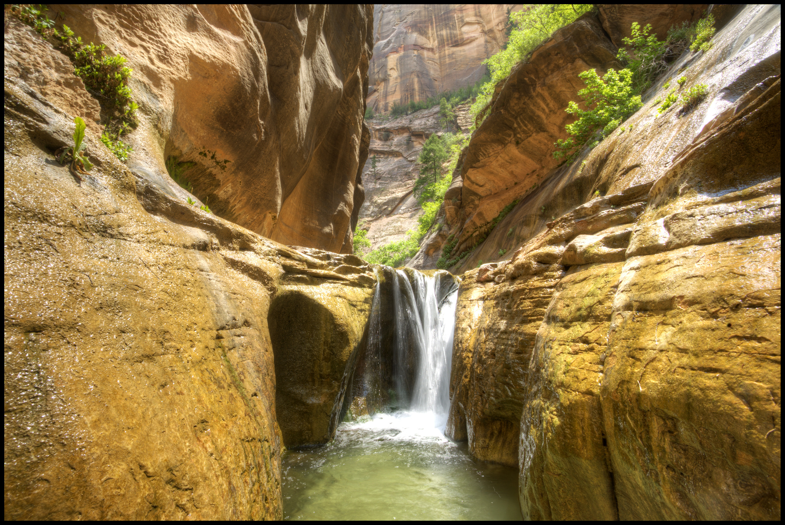 The Narrows, Zion National Park, UT