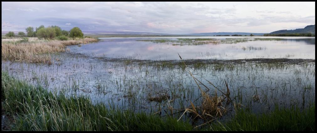Malheur National Wildlife Refuge, OR