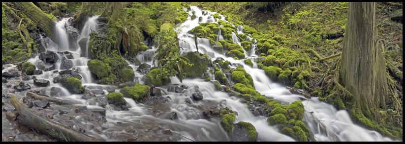 Stream near Multnomah Falls, OR